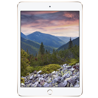 Réparations iPad Mini 3 (A1599/A1600)